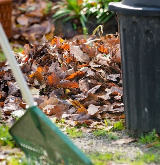 yard waste removal in Monroeville